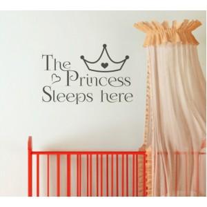 Стикер за стена   Феи    Принцесата спи